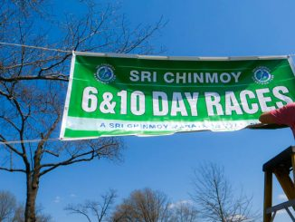 sri chinmoy races 2017